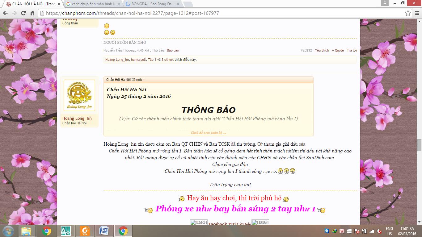 Hoang long.