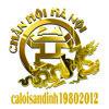 caloisandinh19802012.