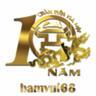 hamvui68